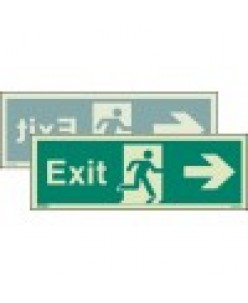 Double Sided Exit Sign- Photoluminscent